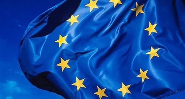 Europejska legitymacja zawodowa