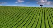 nowe zasady odrolnienia gruntów